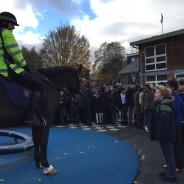 Police Horses Visit Tiverton!